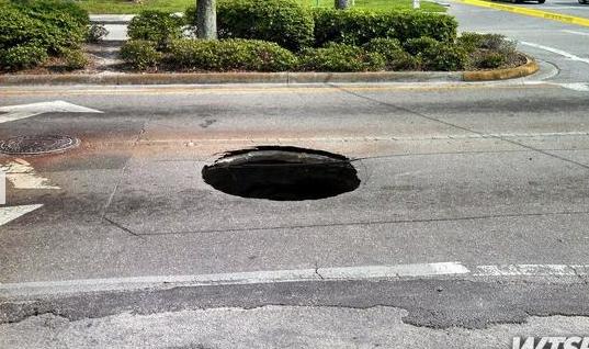 Tampa Florida-2013 5